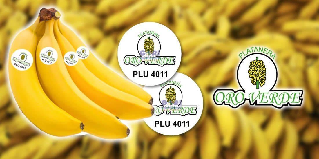 Oro verde pegatinas para plátanos